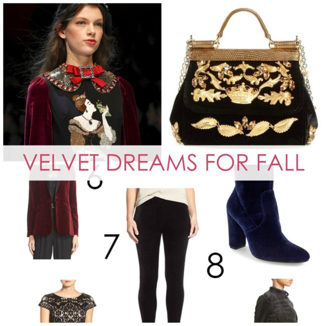 Fall Velvet Fashion - Dream in Lace