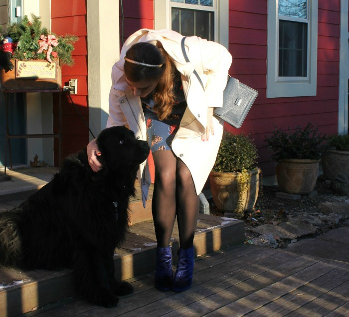 Blue Christmas Outfit with Black Newfoundland and Who What Wear for Target Booties - Dream in Lace
